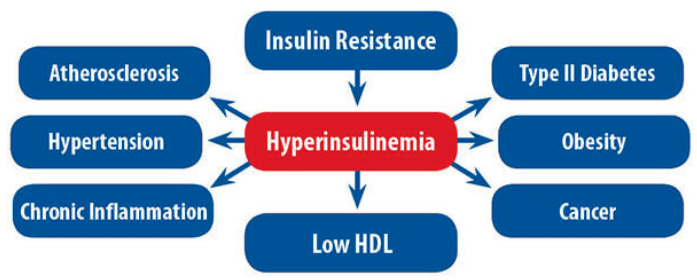 the effects of hyperinsulinemia