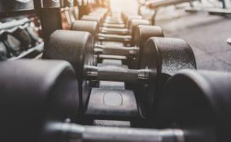 muscle mass predicts longevity