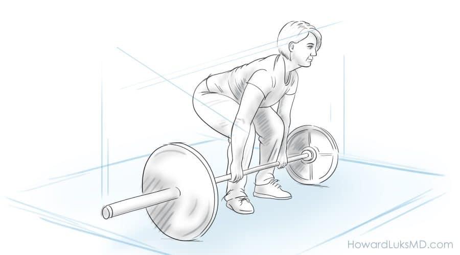 Muscle mass and longevity