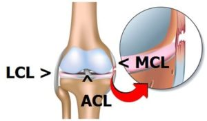 recovery from an MCL injury