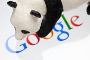 Google Panda Medical Website Blog