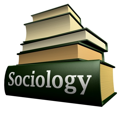 sociology class Courses and syllabi the uwm department of sociology offers a variety of types of undergraduate classes introductory courses (100-level) give an overview of the field of sociology, and are accessible to all students.